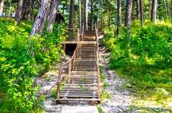 Drewniana ścieżka i schodki zdjęcie royalty free