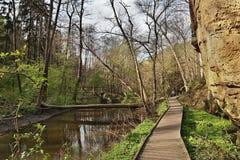 Drewniana ścieżka przy wiosny Peklo doliną z Robecsky potoka zatoczką i duża skała w Machuv kraju regionie turystycznym Obraz Royalty Free