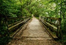 Drewniana ścieżka w drewna Obrazy Stock