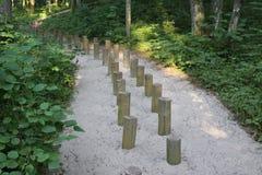 Drewniana ścieżka w lesie Zdjęcie Stock