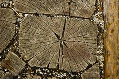 Drewniana ścienna tekstura Zdjęcia Royalty Free
