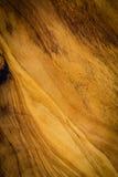 Drewniana ścienna tekstura, brown stary drewniany tło Zdjęcia Royalty Free