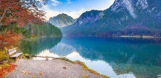 Drewniana ławka na Alpsee jeziora brzeg Zdjęcia Stock