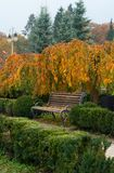 Drewniana ławka w parku Fotografia Stock