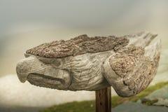 Drewniana broda obok Stà ¼ dlhà ¼ tte, Austria, Grossglockner Zdjęcia Royalty Free