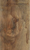 Drewniana Brown tekstura Zdjęcia Stock