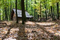Drewniana buda w lesie Zdjęcia Stock