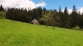 Drewniana chałupa w górach, pogodny wiosna dzień z zieloną trawą i kwiatonośna łąka, zbiory