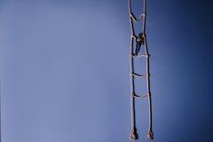 Drewniana ciemna mannequin pozycja na wiszącej linowej drabinie na błękitnym tle Życia pojęcie Selekcyjna ostrość Fotografia Stock