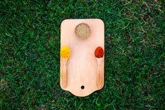 Drewniana deska, łyżka, łopata, trawa i pikantność, Odgórny widok z kopii przestrzenią Zdjęcia Stock
