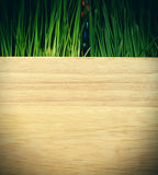 Drewniana deska i trawa Obraz Stock