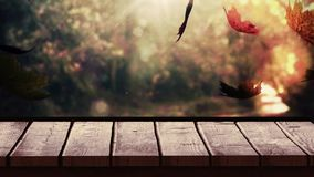 Drewniana deska przeciw jesień liściom zdjęcie wideo