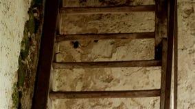 Drewniana drabina zdjęcie wideo