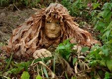 Drewniana dziwożona w trawie Obrazy Stock