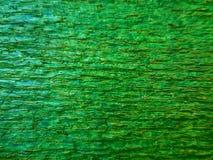 Drewniana farby tła tekstury zieleń Zdjęcie Royalty Free