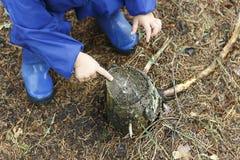 Drewniana fiszorka i dziecka ręka Pojęcie wylesienie Save las od zniszczenia Ekologiczny catastrophy zdjęcia stock