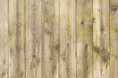 Drewniana frontowa tekstura Zdjęcie Stock