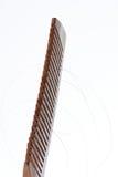 Drewniana grępla z ciemnego włosy pasemkiem Zdjęcie Stock