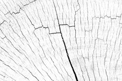 Drewniana grunge tekstura Obrazy Stock