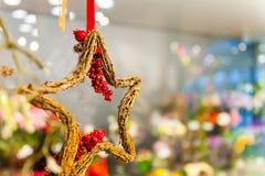 Drewniana gwiazda gałąź z grono czerwonymi jagodami wiesza na faborku lub taśmie inne girlandy i dekoracje kopia Obrazy Royalty Free