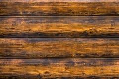 Drewniana horyzontalna burnt listwa, z paciorkami deska, pleśniejący knur obraz royalty free