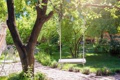 Drewniana huśtawka na arkanach pod dużym drzewem w ogródzie fotografia stock