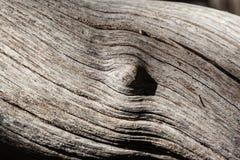 Drewniana kępka fotografia stock