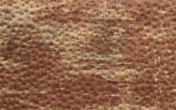 Drewniana kruszcowa ośniedziała tło tekstura Zdjęcia Royalty Free