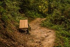 Drewniana parkowa ławka na stronie ślad fotografia royalty free