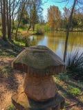 Drewniana pieczarka na jeziornym brzeg Fotografia Stock