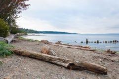 Drewniana plaża Zdjęcie Stock
