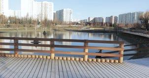 Drewniana platforma w hoarfrost zbiory