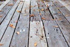 Drewniana podłoga z spadków liśćmi Fotografia Royalty Free