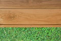 Drewniana podłoga i krzak Obraz Stock