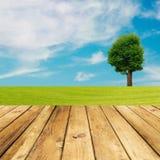 Drewniana pokład podłoga nad zieloną łąką z drzewem i niebieskim niebem Zdjęcia Royalty Free