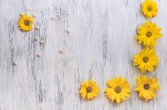 Drewniana powierzchnia malujący biel z kolorów żółtych kwiatami i koralikami perły Piękny tło z chryzantemami Zdjęcie Stock