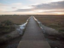 Drewniana przejście ścieżka prowadzi naprzód no opróżnia żadny ludzi plażowego landscap Obrazy Stock