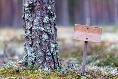 Drewniana pusta plakieta w lesie, samotność, samotność, ochrona środowiska obrazy royalty free