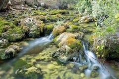 Drewniana rzeka w lecie Obraz Royalty Free