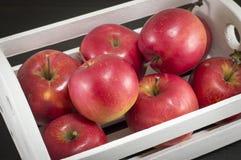 Drewniana skrzynka pełno świezi dojrzali jabłka Zdjęcia Royalty Free