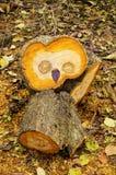 Drewniana sowa Obraz Stock