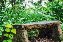 drewniana stanowiska badawczego Obraz Royalty Free