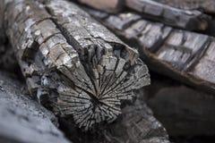 Drewniana struktura Obrazy Royalty Free