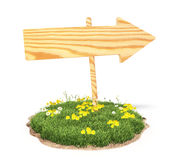 Drewniana strzała na trawie Obrazy Royalty Free