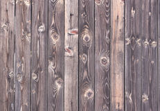 drewniana surowa format tekstura Zdjęcie Royalty Free