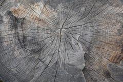 Drewniana szara tło tekstura wiele narysy obrazy stock