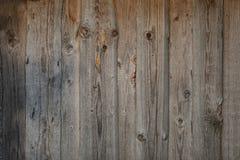 Drewniana szara tło tekstura wiele narysy sosnowi obraz royalty free