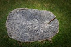 Drewniana sztuka z zielon? traw? robi? by? natury czerni tekstur? zdjęcia royalty free