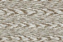 Drewniana tło tekstura Zdjęcie Royalty Free