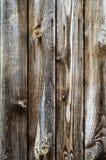 Drewniana tekstura, 05 Zdjęcia Royalty Free